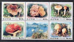 COREE DU NORD  Timbres Neufs **  De 2002  ( Ref  2449 )  Champignons -voir Descriptif - Corée Du Nord