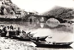 RIJEKA CRNOJEVICA - MARKET - Montenegro