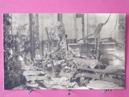 Belgique - Anvers - Jardin Zoologique - Galerie Des Reptiles - Iguanes à Tubercules - Excellent état - Recto-verso - Antwerpen