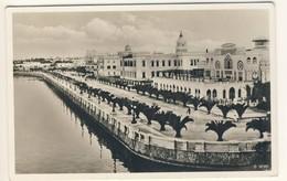 (P79) - LIBYE - CARTE POSTALE - TRIPOLIS - TRIPOLI => ALLEMAGNE 1937 - Libië