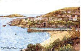 SALMON ART 4177 - HANNAFORE POINT & ST GEORGES ISLAND, LOOE - England