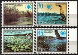 Crane Cormorant Reed Water Lily Ludas Begej Lake Europan Nature Protection LABEL CINDERELLA VIGNETTE 2001 Yugoslavia - Environment & Climate Protection