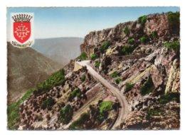 GF (34) 293, Navacelles, Combier 2458, Cirque De Navacelles, La Route Des Gorges - France