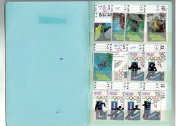 Carnet AMERIQUE - BELIZE,CAIMANES, DOMINIQUE,FALKAND,HAÏTI, SURINAM,PANAMA - Cote Yvert 334 € - Collections (with Albums)