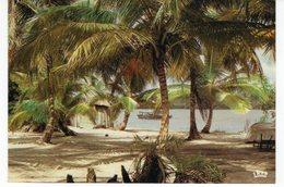 AFRIQUE EN COULEURS BORD DE MER - Postcards