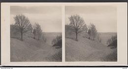 LITHUANIA LITUANIE LITAUEN Old Stereo Photo Card Gilandziai Mound (Klaipeda District)  #12449 - Lithuania