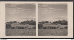 LITHUANIA LIRUANIE LITAUEN Old Stereo Photo Card Medvegalis Mountain #12458 - Lithuania