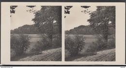 LITHUANIA LITUANIE LITAUEN Old Stereo Photo Card Skomantai Mound (Taurage District) #12459 - Lithuania
