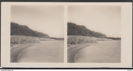 LITHUANIA LITUANIE LITAUEN Old Stereo Photo Card Rambynas Mountain (Klaipeda District) #12461 - Lithuania