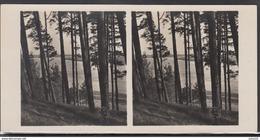 LITHUANIA LITUANIE LITAUEN Old Stereo Photo Card River Nemunas Rambynas Mountain Ragaine (Klaipeda District) #12463 - Lithuania