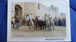 CPM  CHEVAL CHEVAUX AIGUES MORTES LA FETE ABRIVADO MANADE PIERRE AUBANEL 1995 - Chevaux