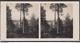 LITHUANIA LITUANIE LITAUEN Old Stereo Photo Card Slavantai Lake (Seinai - Poland District) #12464 - Lithuania
