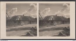 LITHUANIA LITUANIE LITAUEN Old Stereo Photo Card Writer S. Daukantas House In Varniai #12473 - Lithuania