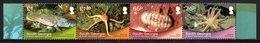 SOUTH GEORGIA 2013 Shallow Marine Surveys Group (SMSG): Strip Of 4 Stamps (ex Sheetlet) UM/MNH - Georgia Del Sud