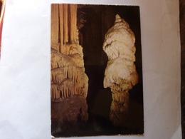 POSTOJNSKA JAMA - Grotte - Caves - Adelsberg - Brijant - Le Brillant - Slovénie