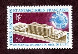 TAAF  N°33 N* TTB Cote 62 Euros  !!! - Ongebruikt