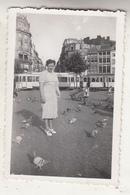 Place Avec Pigeons - Animé - Trams - à Situer - Photo Format 6 X 9 Cm - Plaatsen