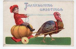 THANSGIVING, Turkey Pulling Pumpkin Wagon, 1908 Postcard, Canada - Thanksgiving