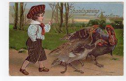THANSGIVING GREETINGS, Fancy Boy Herding Turkeys, 1908 Postcard, Canada - Thanksgiving