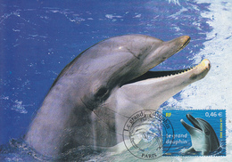 Carte  Maximum  1er Jour     FRANCE    Le  GRAND  DAUPHIN    2002 - Maximumkarten