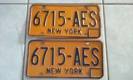 JOLIE PAIRE PLAQUES IMMATRICULATION AMERICAINES USA NEW YORK ASSEZ BON ETAT USA LICENSE PLATE !!! - Plaques D'immatriculation