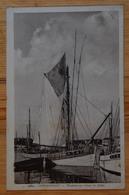 29 : Concarneau -Thoniers Au Retour De Pêche - Bateaux - (n°15601) - Concarneau