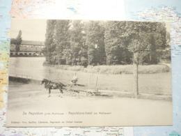 Ile Napoléon Près De Mulhouse / Napoléons-Insel Bei Mülhausen - Mulhouse