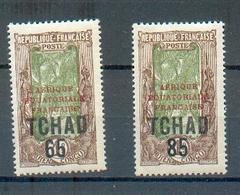 TCHAD 102 - YT 45 Et 48 * - Neufs