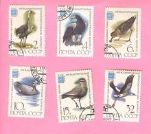 USSR - Fauna - Birds - XVIII International Ornithological Congress - 1982 (complete Set Of 6 Stamps) - 1923-1991 USSR