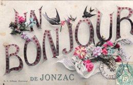 1645 - Cpa 17 Un Bonjour  De Jonzac - Jonzac