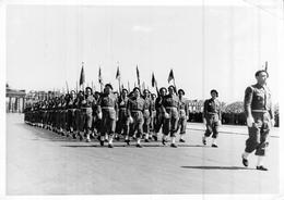 Photo Ancienne Originale Défilé Militaire Français Devant La Porte De Brandebourg 1946 Commission Alliée Ww2 - Oorlog, Militair