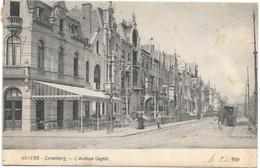 Anvers NA61: Zurenborg. L'Avenue Cogels 1905 - Antwerpen