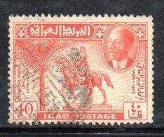 R619 - IRAQ IRAK , 1 Valore Usato - Iraq