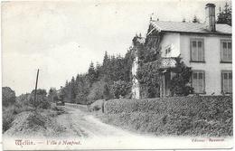 Wellin NA30: Villa à Neupont 1907 - Wellin