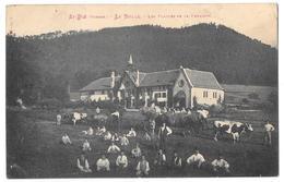 SAINT DIE - LA BOLLE - Les Plaisirs De La Fenaison - Saint Die
