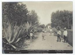 Photo Originale  Abel Briquet 1896. Alrededores De MEXICO - Entrada De Un Pueblo - Fotos