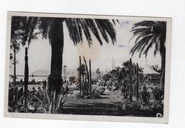 CPA écrite Par Le Peintre Charles Kiffer à Sa Famille - Cannes - Les Jardins De L'esplanade - Artistes