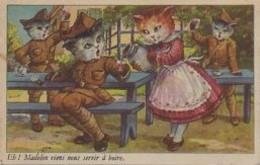 CHATS Humanisés  Eh La Madelon Viens Nous Svir à Boire - Katten