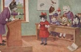CHATS Humanisés - Katten