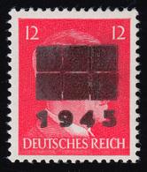 Netzschkau-Reichenbach 8IIa Freimarke 12 Pf Mit Schwärzung Typ IIc, ** - Allemagne