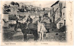 86 ANGLES - Un Muletier - France