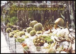 UKRAINE. NIKITA. CACTUSSES COLLECTION OF BOTANICAL GARDEN. Unused Postcard - Cactus
