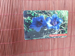 Phonecard With Chip Flowers Used Only 50.000 Ex Made Rare - Slovaquie