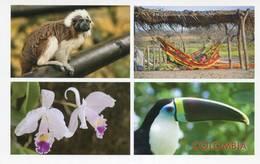 Lote PEP1095, Colombia,  Postal, Postcard, Orchid, Bird, Monkey,  Orquidea, Mono, Ave, GCO 2221 - Colombia