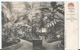 Laeken - Parc Royal De Laeken - Les Serres - La Serre Des Palmiers Chauds - L'Orangerie - Editeurs Vanderauwera & Cie - Laeken