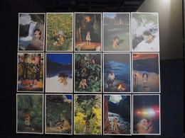TROLLS From Norvegia Lot De 36 Cartes Postales - Fairy Tales, Popular Stories & Legends