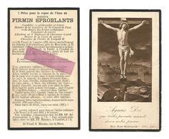 WO 46.FIRMIN SPROELANTS-Adjudant 6e Reg.Jagers Te Voet/Ridder Orde Leopold II-°ST-TRUIDEN 1894/+heldendood 1918Moorslede - Imágenes Religiosas