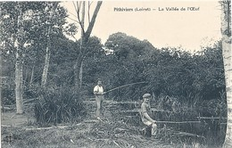 45-CPA-PITHIVIERS LA VALLEE DE L OEUF - Pithiviers