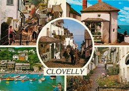 CPSM Clovelly                                                                          L2700 - Clovelly
