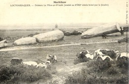 56 LOCMARIAQUER - Dolmen Le Men-er-H'roek (tombé Au XVIIIè Siècle Brisé Par La Foudre) - Men-er-Kroeck, Pierre De La Fée - Locmariaquer